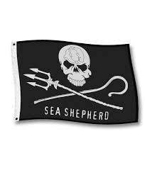 Sea Flag Meanings Jolly Roger Flag Sea Shepherd Boutique