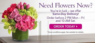 flowers same day delivery flowers buy flowers flower delivery new zealand teleflora