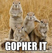 Gopher Meme - inspirational gopher family memes quickmeme funny pics