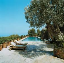 the best swimming pools in vogue loversiq