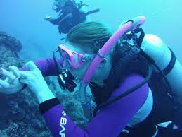 100 padi instructor manuals 2013 training archives