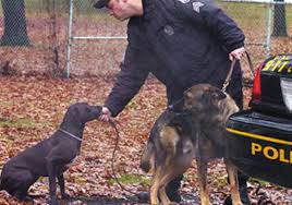 Homestead Partners Canine Officers Earn Their Keep Respect From Their Partners