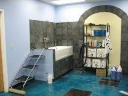 pet grooming tubs foter