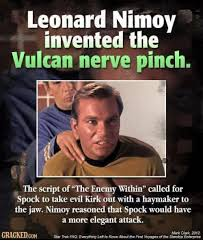 Script Meme - leonard nimoy invented the vulcan nerve pinch the script of the