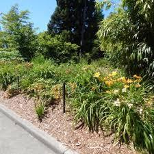 Botanical Gardens Seattle Carl S Jr Botanical Garden 66 Photos Botanical Gardens