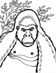 baby gorilla coloring pages s easy to make gorilla coloring page