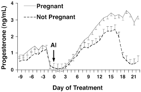 relationship between follicle size at insemination and pregnancy