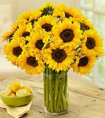 bouquet of sunflowers send beautiful sunflower bouquet in canada flowers canada