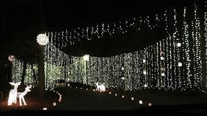 christmas lights huntsville al huntsville botanical garden galaxy of lights beingmommywithstyle