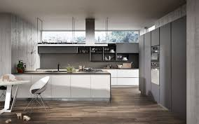 modern grey and white kitchens design home design ideas