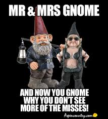 Gnome Meme - mr mrs gnome memes and now you gnome why you don t see more of