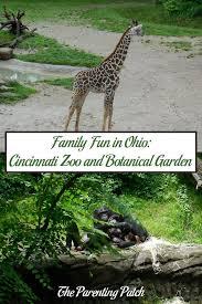 Botanical Garden Cincinnati Family In Ohio Cincinnati Zoo And Botanical Garden