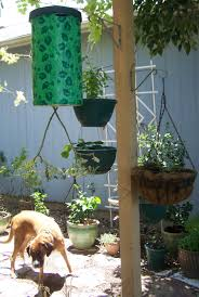 hanging backyard potted plants for small backyard garden spaces ideas