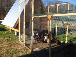 Small House Construction Poultry House Construction Pdf With Inside Large Chicken Coop