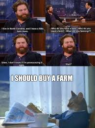 Zach Galifianakis Meme - my thoughts after seeing this zach galifianakis meme imgur