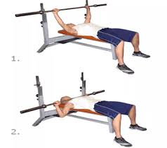 How Much Does A Bench Bar Weigh How Much Should I Start Bench Pressing Working Out Quora