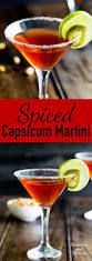 red martini splash spiced capsicum martini sprinkles and sprouts