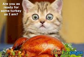 thanksgiving ecard ecards for