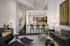 Interior Designs For Apartment Living Rooms Apartment Exquisite Small Apartment Decoration With Dark Walnut