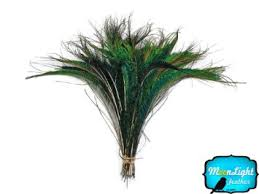 moonlight feathers buy moonlight feather peacock feathers 6 10 quot