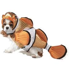 new costumes for dogs and cats costume craze blog