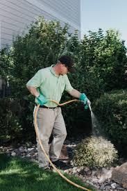tree shrub watering services fitturf