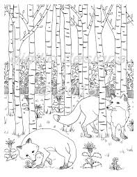 coloring page foxes in the forest fox woodland