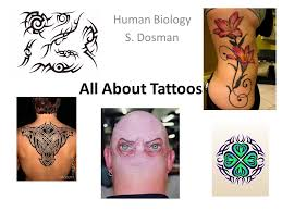 human biology s dosman all about tattoos ppt video online download