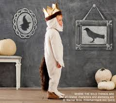 wild max costume pottery barn kids