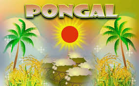 Pongal Invitation Cards Pongal Pictures Images Commentsdb Com Page 4