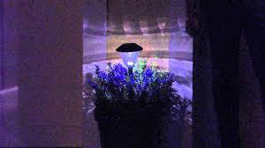 energizer 10 piece solar landscape light set energizer 10 piece solar landscape path light set with alberti popaj