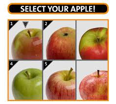 an apple a day dietary