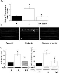 role of nadph oxidase and stat3 in statin mediated protection