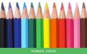 Blindness In The World You U0027ll Be Amazed How People With Color Blindness See The World 10