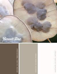 soft and subtle neutral paint palette using beauti tone paints