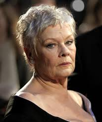 judi dench hairstyle front and back of head file judidenchfeb07 jpg wikimedia commons