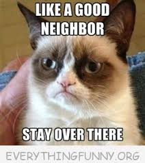 Angry Cat Good Meme - best of grumpy cat memes archives everything funny