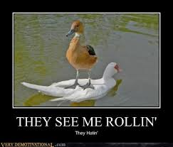 They See Me Rollin They Hatin Meme - they see me rollin very demotivational demotivational posters