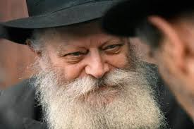 the rebbe book reviews trying to grasp the rebbe books news chabad