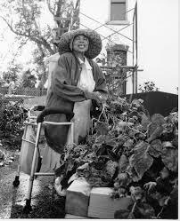 Urban Garden Denver - bruce randolph community garden denver urban gardens