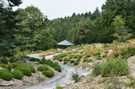 New Zealand Botanical Gardens Pacific Connections Garden Of Washington Botanic Gardens