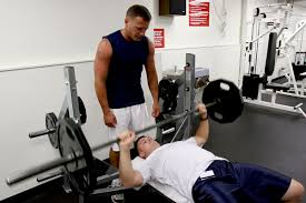 bench press wikipedia