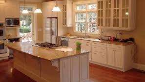 Kitchen Cabinet Glass Door Inserts Gratify Glass For Cabinet Doors Inserts Tags Glass Cabinet Door