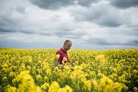 doubts about the promised bounty of genetically modified crops