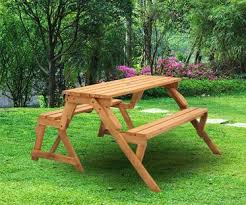 2 in 1 picnic table and bench