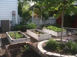 garden beds raised melbourne home outdoor decoration