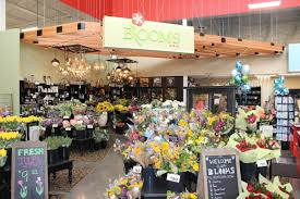 Heb Flowers - heb flower shop the best of flower 2017