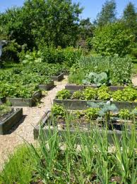 Advantage Of Raised Garden Beds - raised bed gardening with gravels and wooden borders the