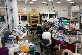 Biology Lab Bench Ginkgo Builds Out Robot Labs As Microbe Design Business Grows