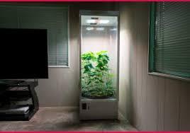 chambre de culture complete pas cher chambre de culture complete pas cher 137612 placard culture cannabis